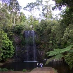 Millaa Millaa Wasserfall