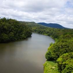 Regenwald & Fluss aus der Vogelperspektive
