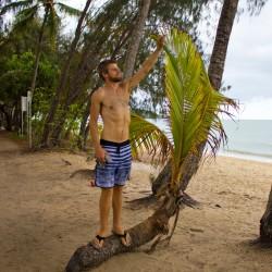 Dennis erklimmt eine Palme