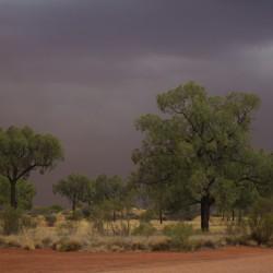 Heftiger Sturm
