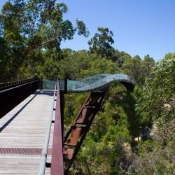 Brücke über Bäumen